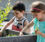 Early Childhood students learn green skills at Rooftop Garden