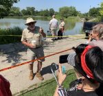 'Alligator Bob' on the trail of Humboldt Park gator