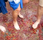 Making wine the old-fashioned way at Central Illinois wineries