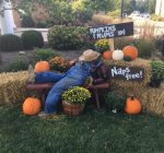 Scarecrows return to Eureka as fall begins