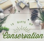 R.F.D. NEWS & VIEWS: USDA issues '12 Gifts of Conservation'