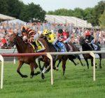 Arlington racecourse bucking casino idea causes stir