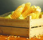 Corn adds pop to salads