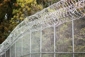 Illinois Senate committee focuses on criminal sentencing reforms