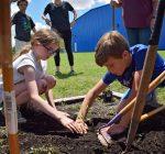 Organizations help schools plant, grow school gardens