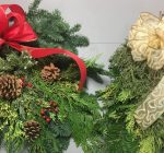 Harvesting evergreens for holiday decorations