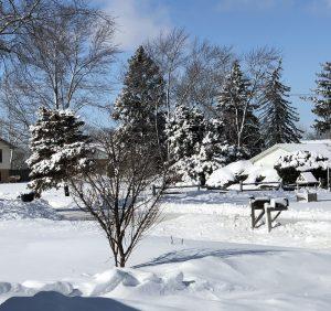 Dangerous cold settles in across Illinois