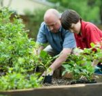 Gardening benefits body, mind and wallet