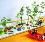 CREATIVE FAMILY FUN: Food scraps grow in saucer garden