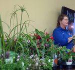 Applications for master gardener training available online
