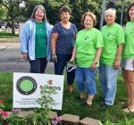 Master Gardeners educate community at Morton Public Library