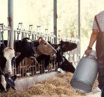 Extension program supports farm mental health efforts