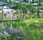 Green infrastructure solutions aim to protect water supply