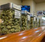 State to pick overdue marijuana dispensary winners