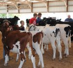 Tazewell County 4-H Show gets underway