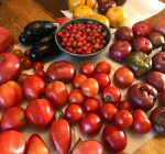 Annual Vegetable Swap returns to Heartline and Heart House