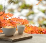 It's the tase of fall but is pumpkin spice good for you?