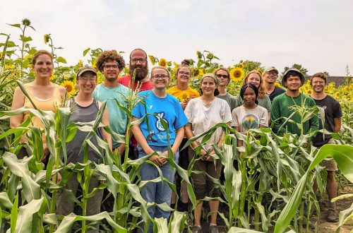 Urban farm's goes for specialty crops, reducing food insecurity