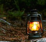 DuPage forest preserves hosting Halloween programs